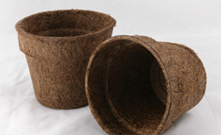 plant Pots Biodegradable